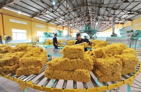 Hoạt động sản xuất ổn định đẩy giá cao su đồng loạt tăng