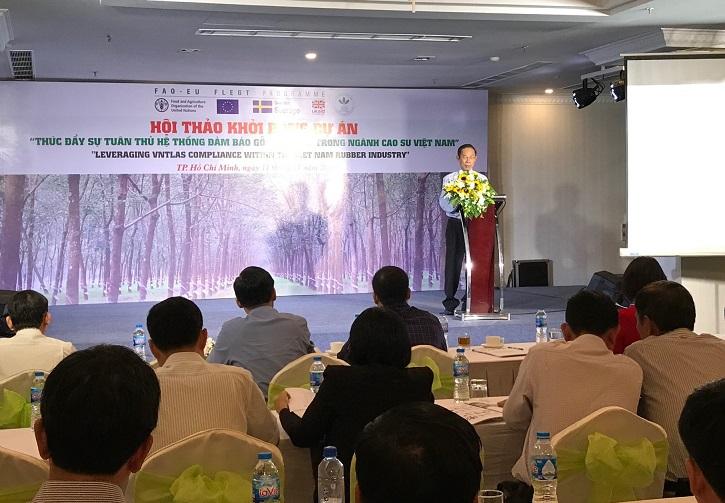 Thúc đẩy gỗ hợp pháp trong ngành cao su