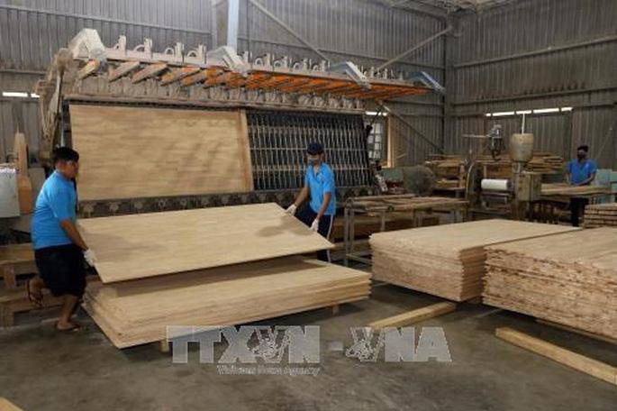 Thúc đẩy thực hành thương mại gỗ và sản phẩm gỗ có trách nhiệm