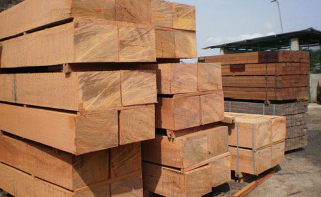 Xuất khẩu gỗ sẽ cán mốc 12,5 tỷ USD trong năm 2020