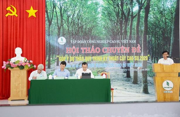 Quy trình kỹ thuật cây cao su năm 2020 sẽ ban hành vào tháng 10