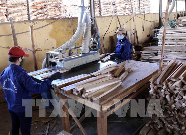 Ngành gỗ Việt khẳng định vị thế mới trên thị trường thế giới