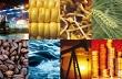 Giá hàng hóa nguyên liệu lao dốc do nội tệ các nước xuất khẩu giảm