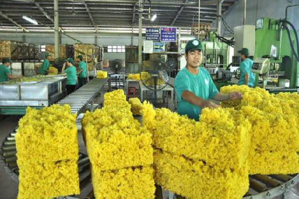 Ảnh hưởng từ chiến tranh thương mại, xuất khẩu cao su cuối năm dự báo khó khăn