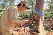 Đăk Nông: Nông dân đang rất cần được đào tạo nghề trồng, khai thác cao su