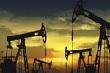 Các nhà sản xuất dầu toàn cầu cho biết khả năng đạt được việc cắt giảm sản lượng