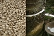 [Giá hàng hóa] Cao su mất gần 4%, cà phê robusta chững giá