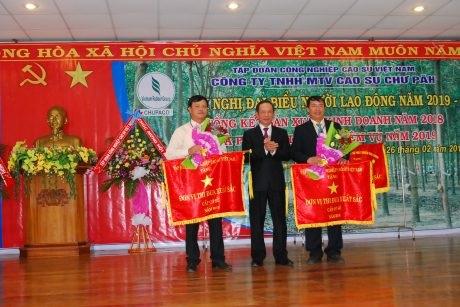 Cao su Chư Păh phấn đấu khai thác 7.700 tấn mủ năm 2019