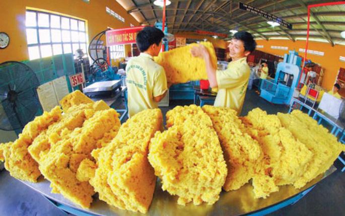 COVID-19 sẽ tiếp tục cản đường cao su Việt Nam mở rộng thị trường