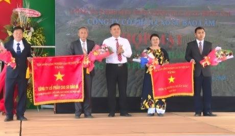 Cao su Lai Châu 2 chuẩn bị khai thác gần 600 ha
