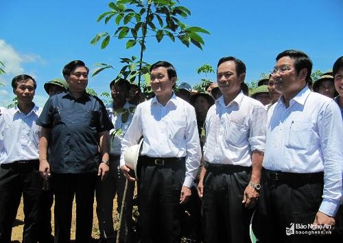 Công ty cổ phần Đầu tư phát triển Cao su Nghệ An: Vững bước phát triển