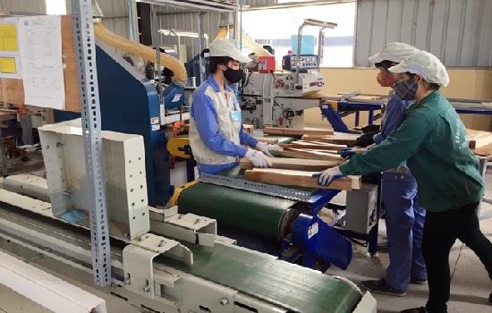 Tuyên Quang đưa sản phẩm gỗ rừng trồng ra thị trường thế giới