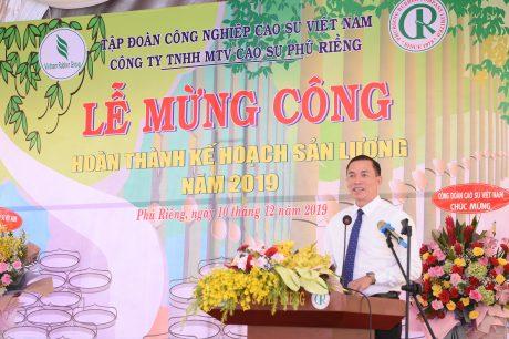 Năng suất vườn cây Cao su Phú Riềng đạt 2,26 tấn/ha