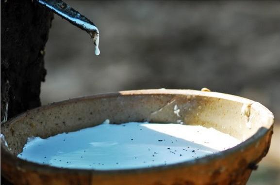 Mạch nguồn 'vàng trắng' vùng Tây Bắc giúp người dân thoát nghèo