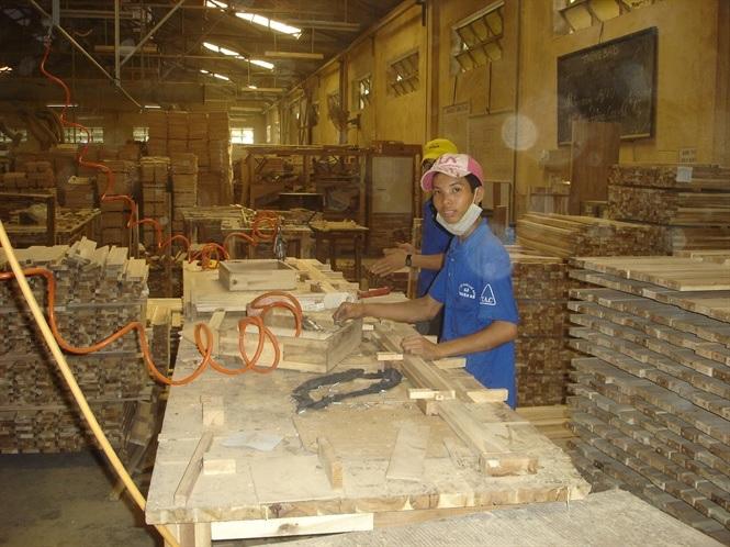 Ngành gỗ gặp khó về gỗ nguyên liệu