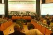 Đầu tư tăng trưởng kinh tế xanh cho tỉnh Quảng Nam