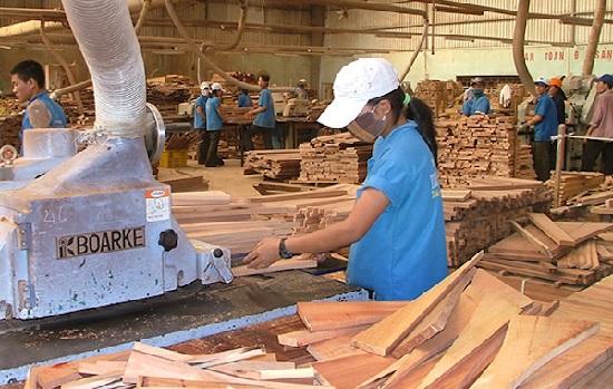 Nỗi lo doanh nghiệp Trung Quốc gia tăng đầu tư vào ngành gỗ