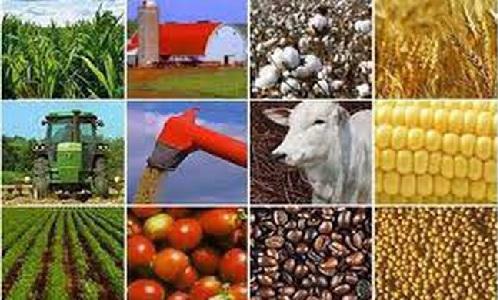 Thị trường hàng hóa ngày 23/3: Đồng loạt đảo chiều giảm giá, từ vàng, dầu cao su đến nông sản