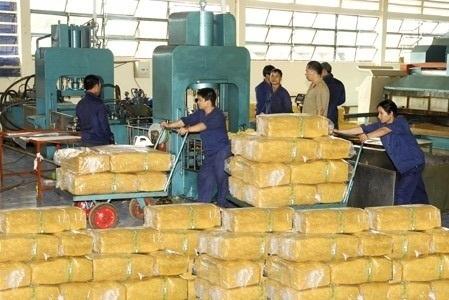Xuất khẩu cao su mang về hơn 800 triệu USD trong 6 tháng đầu năm