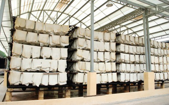 Xuất khẩu cao su tăng mạnh cả lượng và giá trị trong tháng 11Xuất khẩu cao su tăng mạnh cả lượng và giá trị trong tháng 11