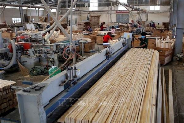 Thứ trưởng Hà Công Tuấn: Ngành gỗ phải đảm bảo minh bạch xuất xứ hàng hóa